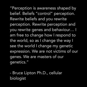 Change your beliefs, as perception is awareness shaped by belief.