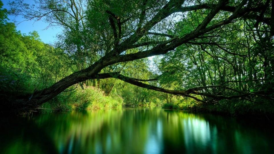 Members Benefit: Enjoy the stillness of natural balance